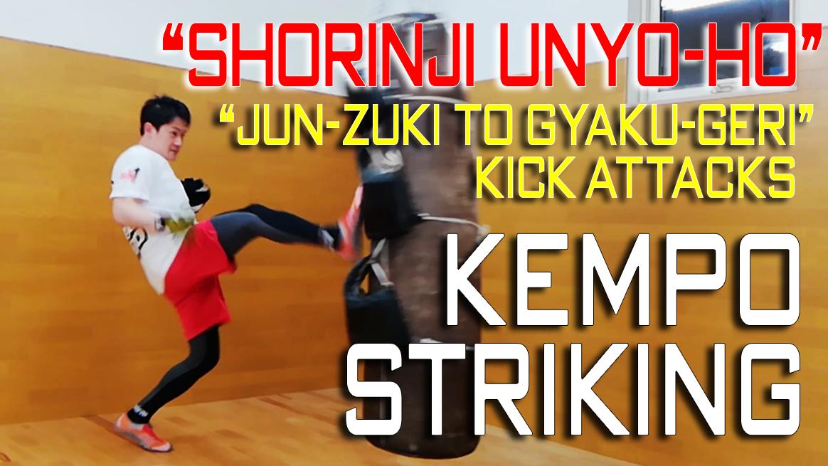 「変則技」の前手の順突き(左ジャブ)と 逆蹴りの連続攻撃 | Kempo Striking